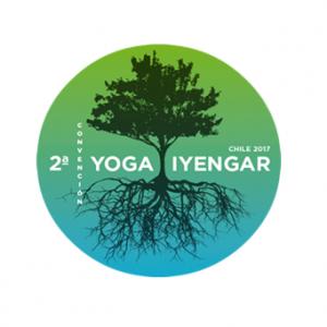 yoga iyengar1