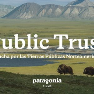 prensa_1440x560_publictrust
